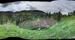 Alta wildflower walk