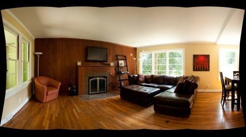 Steve Sanner Living Room 1