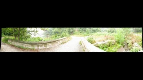Schenley Pond
