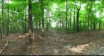Dairy Bush GigaPan - 101 - August 02 2011
