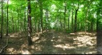 Dairy Bush GigaPan - 103 - August 18 2011