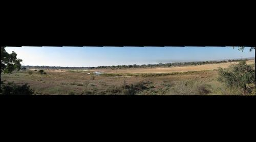 Letaba, Olifants River, Kruger National Park, South Africa.