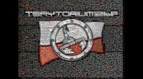 Terytorium logo #2