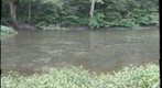 Tippecanoe River 2011 4