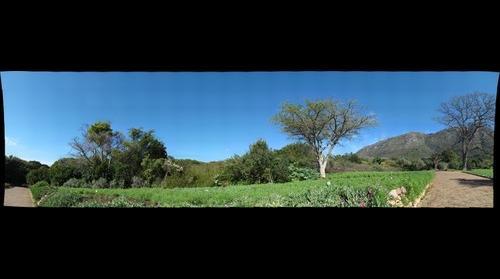 Kirstenbosch Gardens, 2