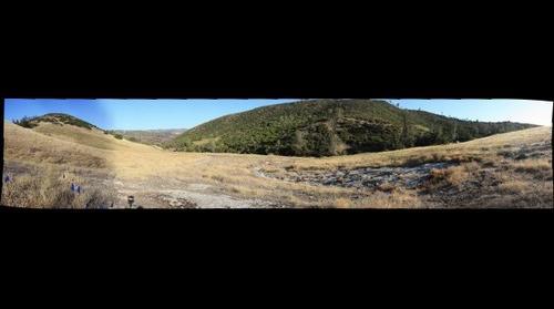 White Mountain McLoughlin Nature Reserve 10Aug11
