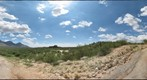 Catalina State Park, Arizona: August 14, 2011