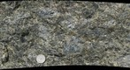 Anorthosite Roadcut (Macro)