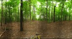 Dairy Bush GigaPan - 106 - September 07 2011