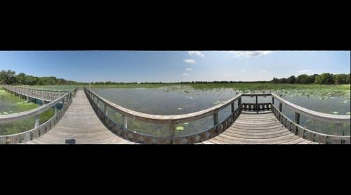 Brazos Bend State Park, Texas