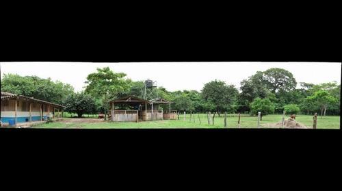Finca Nicadev, Escamequita, Nicaragua