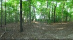 Dairy Bush GigaPan - 107 - September 14 2011