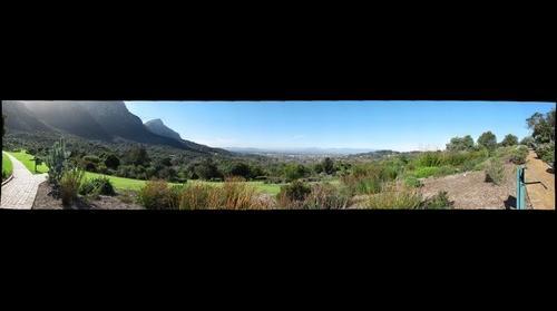 Kirstenbosch National Botanical Gardens, image 3