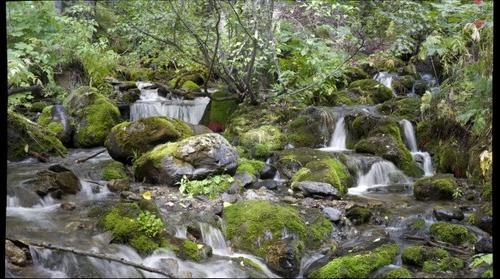 Falls Creek, Turnagain Arm, Alaska