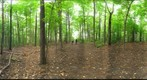 Dairy Bush GigaPan - 108 - September 21 2011