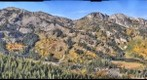 Aspen phenome project panorama