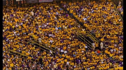 Southwest Endzone LSU-Florida