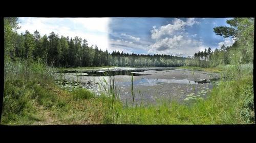One of the smaller Kolmoislammit lakes, Nuuksio Park, Finland