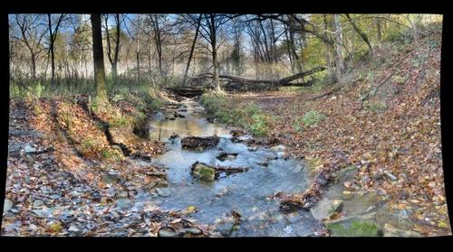 Abe's Creek on October 17, 2011