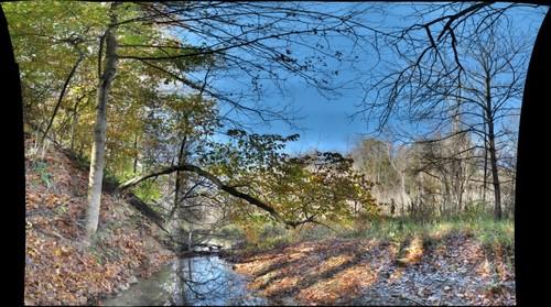 Abe's Creek Downstream