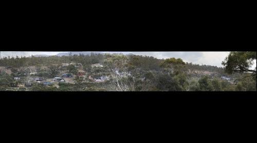 tolmans hill