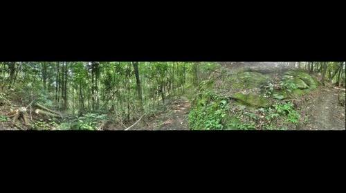 Appalachian Trail #4