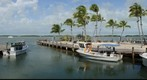 Islamorada Fish Company - First attempt on a windy day.  See Image taken on October 6, 2012