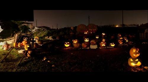 Arturo bonuccelli Zucche per Halloween