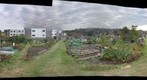Allotments 2011-10-16