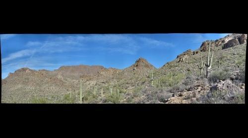 Tucson area landscape