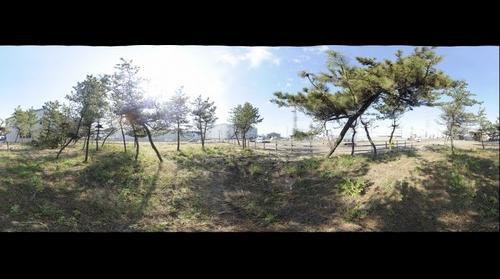 Minato 4, Miyagino Ward, Sendai City, Miyagi Pref., Japan, 17 Nov. 2011