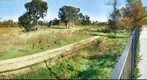 Yesterday &amp; Today - Madrona Marsh - Torrance, CA December 23 2011 G-90 - John Post