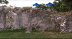 Limestone outcrop at Alice C. Wainwright Park, Miami, FL