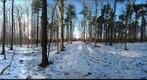 Dairy Bush GigaPan - 123 - January 04 2012