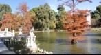 El Retiro de Madrid
