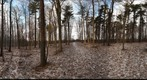 Dairy Bush Gigapan - 125 - January 18 2012