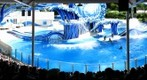 SeaWorld Orlando, Dolphin Show 2