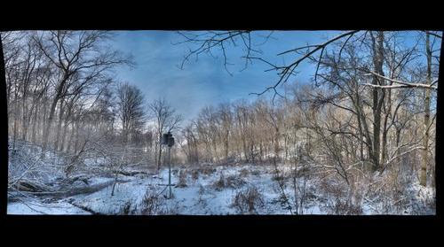 AFS Wetland January 2012