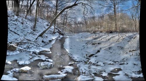 Abes Creek Looking Downstream Jan 2012
