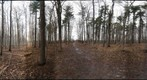 Dairy Bush Gigapan - 127 - February 01 2012