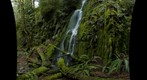 Goldstream Waterfalls