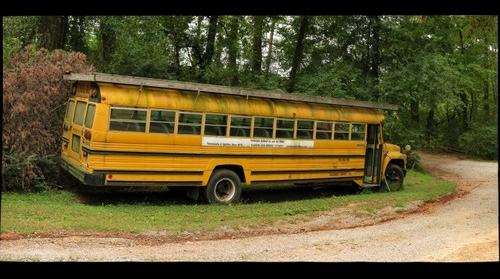 School Bus - Yellow