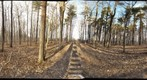 Dairy Bush GigaPan - 128 - February 08 2012