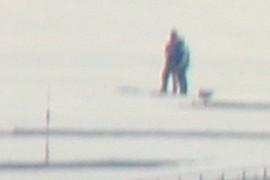 Skiing?