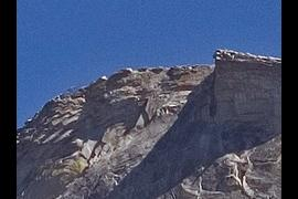 Diving Board on top of Half Dome