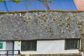 Wavy roofline