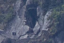 enter cave