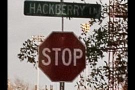Hackberry STOP