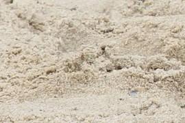 Sand sampled