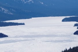 still ice